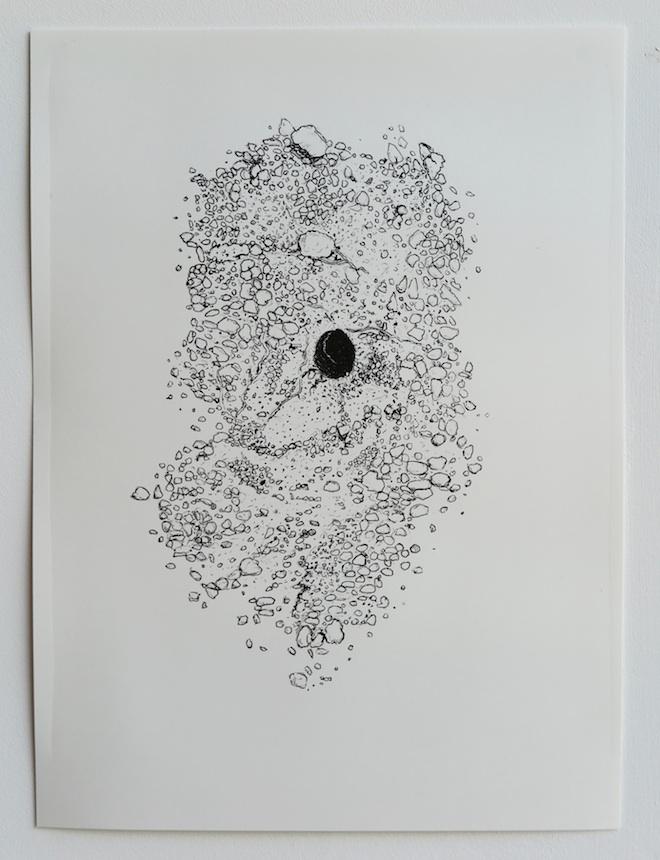 morag_colquhoun_solitary_bee
