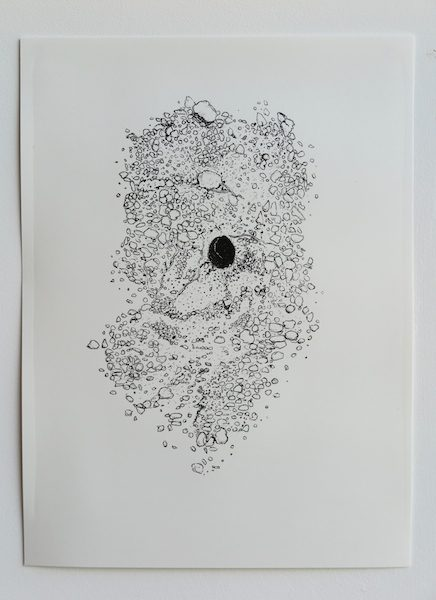 Solitary Bee print by Morag Colquhoun and Lisa Wilkens published by ambergris editions